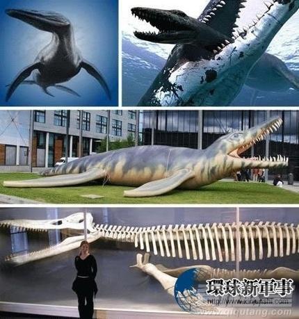 千年难遇世界上已经灭绝的怪物 - 雷石梦 - 雷石梦(观新闻)
