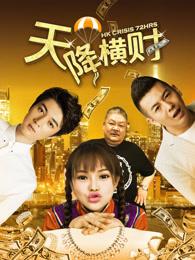 天降横财(2017)
