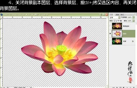 photoshop抠图教程-使用快速通道抠荷花