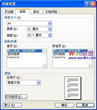 Word2003纸张和文档网格的设置